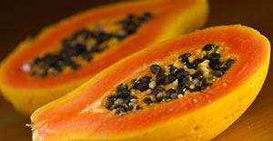 papajya-polza