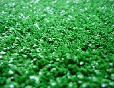 декоративная трава газон