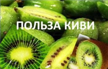 kivi-polza-i-vred-dlya-zhenshchin