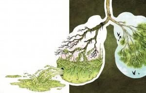 detoksikaciya-organizma2