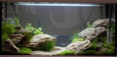 kamni-i-kameshki-v-akvariume