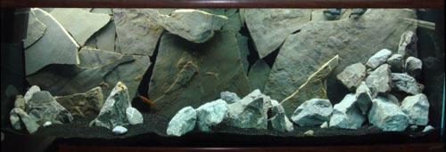 oformlenie-zadnej-stenki-akvariuma