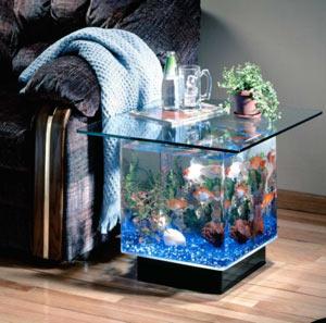 ukrasit-akvarium-v-domashnih-usloviyah