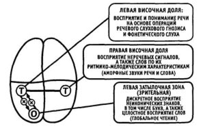 disleksiya2