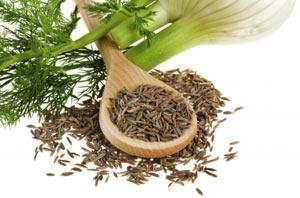 semena-fenhelya-poleznye-svojstva-i-protivopokazaniya