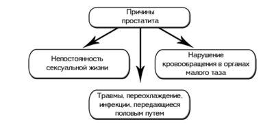prichiny-vozniknoveniya-prostatita-u-molodyh-muzhchin