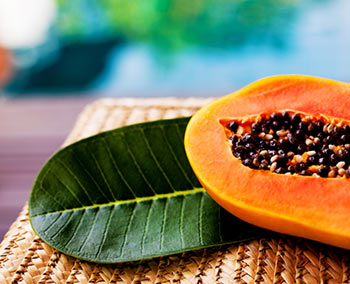 papajya-polza-i-vred