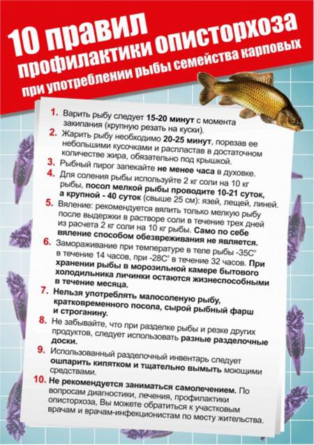 profilaktika-opistorhoza-v-domashnih-usloviyah