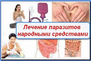 Как народными методами избавиться от паразитов в организме